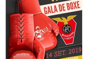 Boxe: gala Águias da Musgueira
